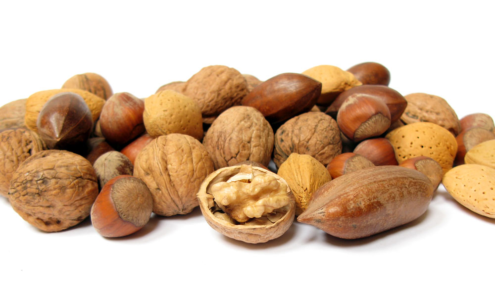 Nuts and fruits contain much oil